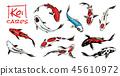 Set of Koi carps, japanese fish on white background. colored korean animals. Sea creature. Engraved 45610972