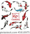 Set of Koi carps, japanese fish. colored korean animals. Engraved hand drawn line art Vintage tattoo 45610975