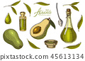 avocado, fruit, ingredient 45613134