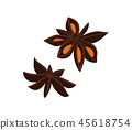 Anise seed isolated icon 45618754