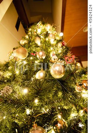 I Lit Up The Christmas Tree Stock