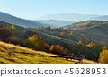 mountain, autumn, meadow 45628953