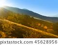 mountain, meadow, hill 45628956