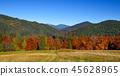 mountain, autumn, meadow 45628965