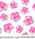 벡터, 꽃, 3d 45630509