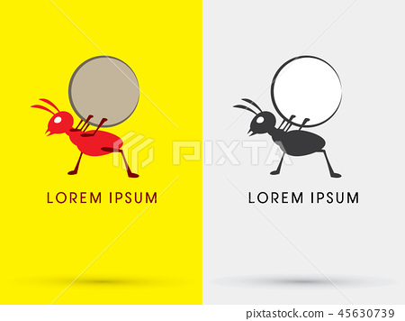 Ant design graphic vector. 45630739