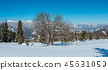 Winter snowy Carpathian mountains view, Ukraine 45631059