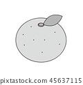 橙色橙色單色灰度 45637115