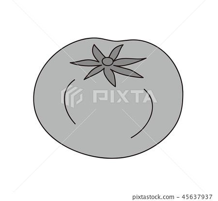 番茄單色灰度 45637937