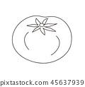 番茄著色書線描 45637939