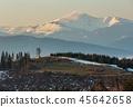 forest hill landscape 45642658