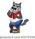 isolated, wolf, animal 45670348