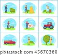 sow, plantation, vector 45670360