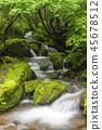 風景 景觀 苔蘚 45678512