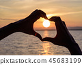 The silhouette of Heart-shaped hands 45683199