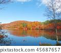 秋叶秋天风景背景 45687657