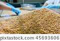 Workers sorting organic raw dry soy beans at soy milk factory 45693606