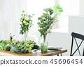 ช่อดอกไม้ความงามพฤกษศาสตร์วิถีชีวิตความงาม 45696454