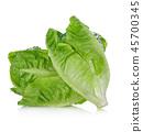 Fresh  lettuce isolated on white background. 45700345