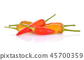 Hot chili peppers on a white background 45700359