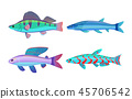 Mackerel Blue Fish Fauna Set Vector Illustration 45706542