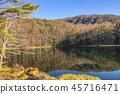 풍경, 경치, 자연 45716471