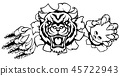 bowling, tigers, torn 45722943