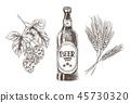 beer hop wheat 45730320