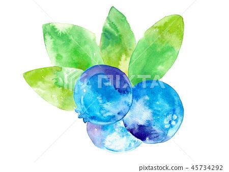 blueberries, blueberry, fruit 45734292