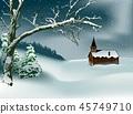 Winter Christmas Scene 45749710