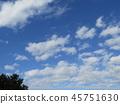 ท้องฟ้าเป็นสีฟ้า,ฤดูใบไม้ร่วง 45751630