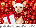 animal bauble christmas 45759351