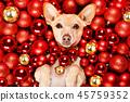 animal bauble christmas 45759352