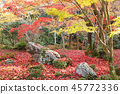 Autumn leaves garden 2 45772336
