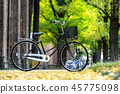 bicycle parked in the park, among the fields  45775098