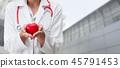 医生 博士 女性 45791453