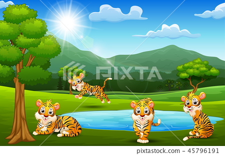 Happy tiger group playing next to small pond 45796191