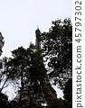 艾菲尔铁塔 45797302