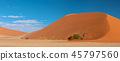 Dune 45 in Sossusvlei, Namibia desert 45797560