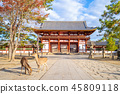 deers and middle gate of todaiji in nara, japan 45809118