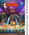 Acrobats and animals performing, circus arena 45810340