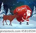 christmas, reindeer, bag 45810594