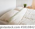 침실 45810842