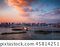 Tokyo skyline with Tokyo Tower and Rainbow Bridge at sunset in Japan 45814251