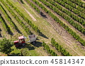 Red tractor ready for harvesting grapes vineyard 45814347