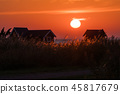 Colorful sunset with golden reeds 45817679