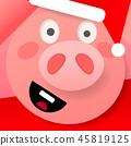 pig, 2019, zodiac 45819125