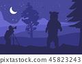 bear nature photographer 45823243