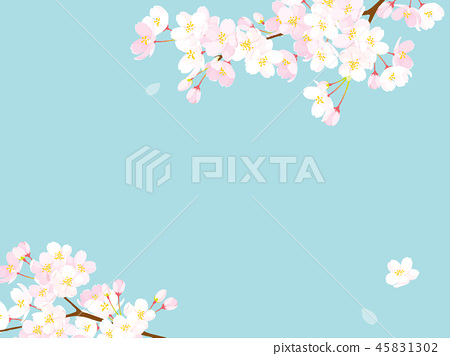 Cherry background illustration 45831302