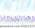 라벤더 밭 수채화 45831374